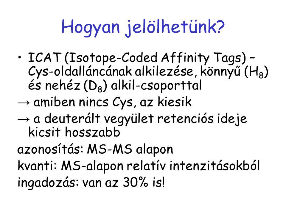 Hogyan jelölhetünk? ICAT (Isotope-Coded Affinity Tags) – Cys-oldalláncának alkilezése, könnyű (H 8 ) és nehéz (D 8 ) alkil-csoporttal → amiben nincs C