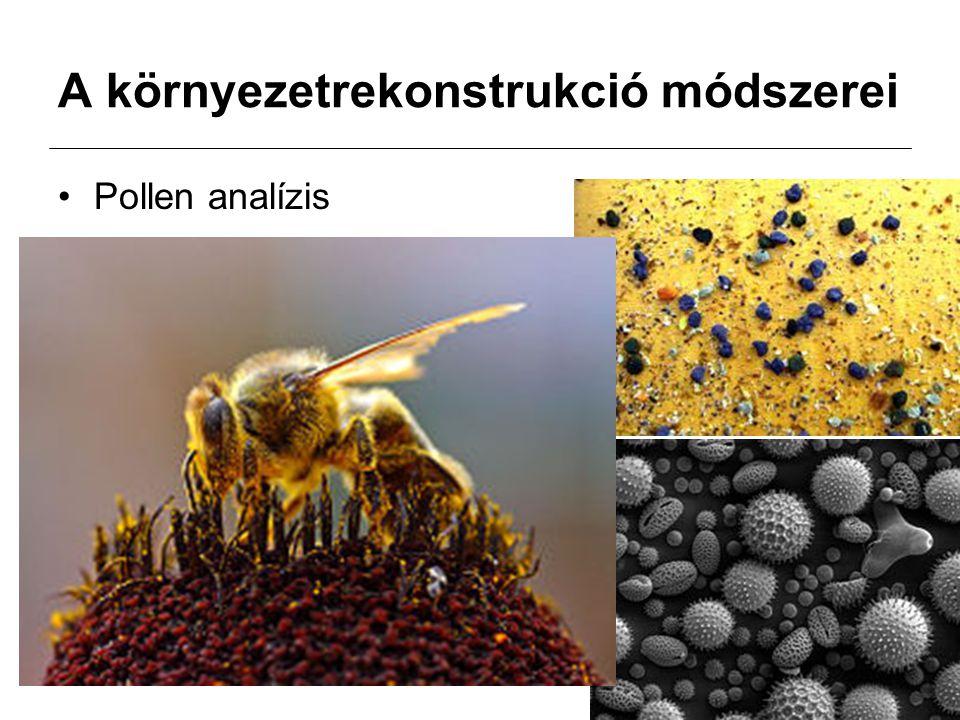 A környezetrekonstrukció módszerei Pollen analízis