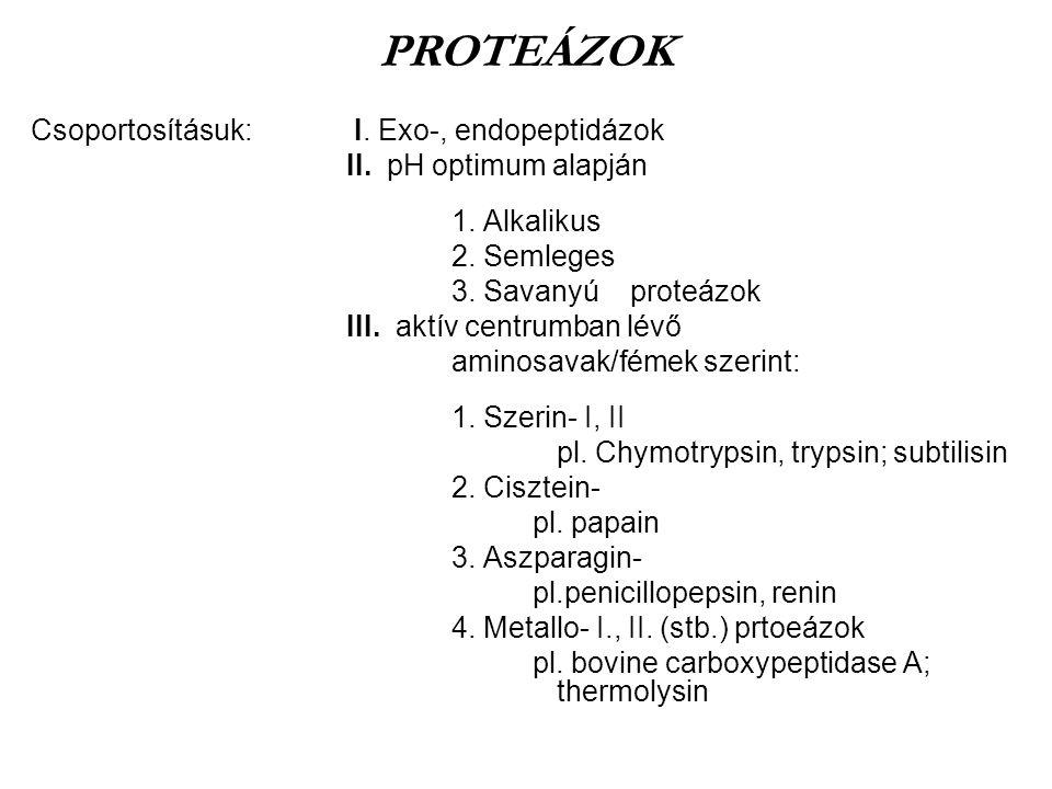 Csoportosításuk: I. Exo-, endopeptidázok II. pH optimum alapján 1. Alkalikus 2. Semleges 3. Savanyú proteázok III. aktív centrumban lévő aminosavak/fé