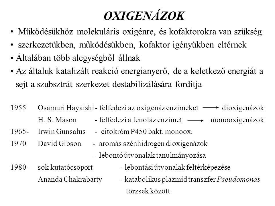 OXIGENÁZOK Működésükhöz molekuláris oxigénre, és kofaktorokra van szükség szerkezetükben, működésükben, kofaktor igényükben eltérnek Általában több al