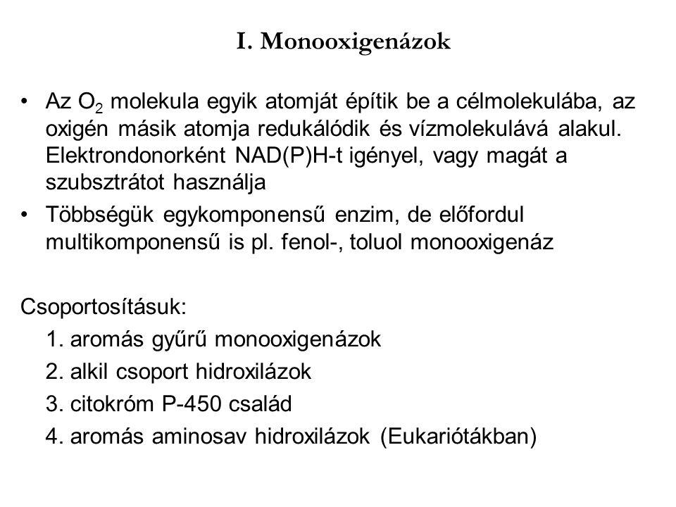 I. Monooxigenázok Az O 2 molekula egyik atomját építik be a célmolekulába, az oxigén másik atomja redukálódik és vízmolekulává alakul. Elektrondonorké