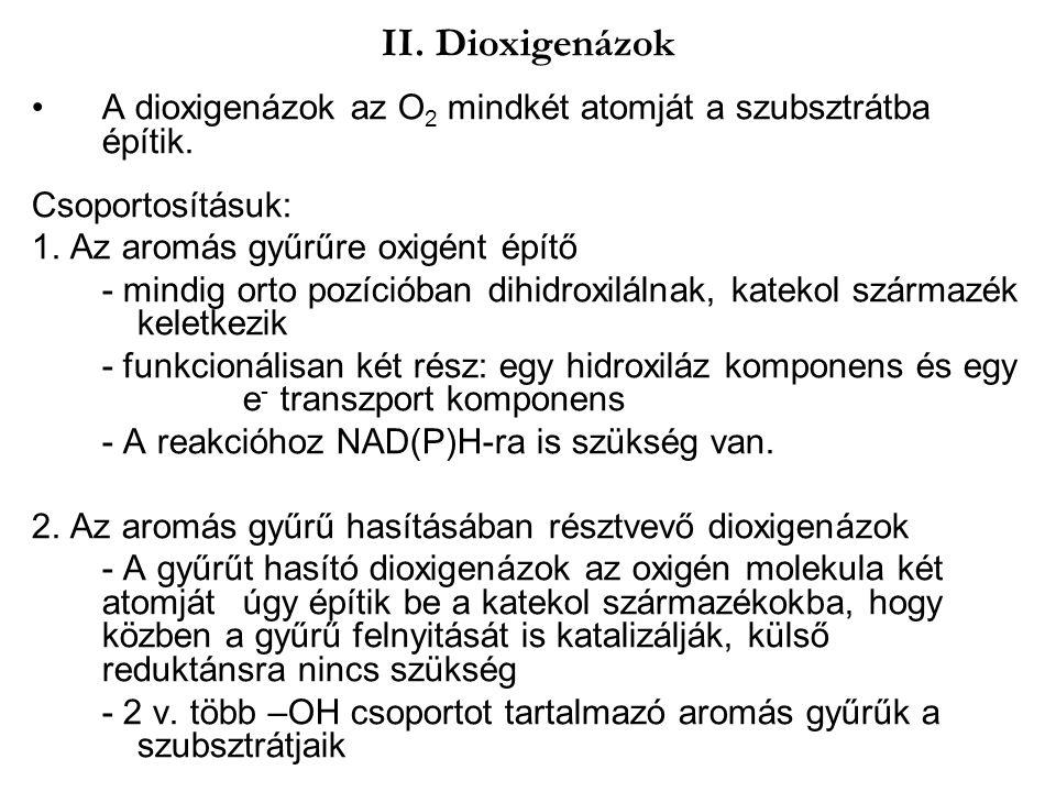 II. Dioxigenázok A dioxigenázok az O 2 mindkét atomját a szubsztrátba építik. Csoportosításuk: 1. Az aromás gyűrűre oxigént építő - mindig orto pozíci