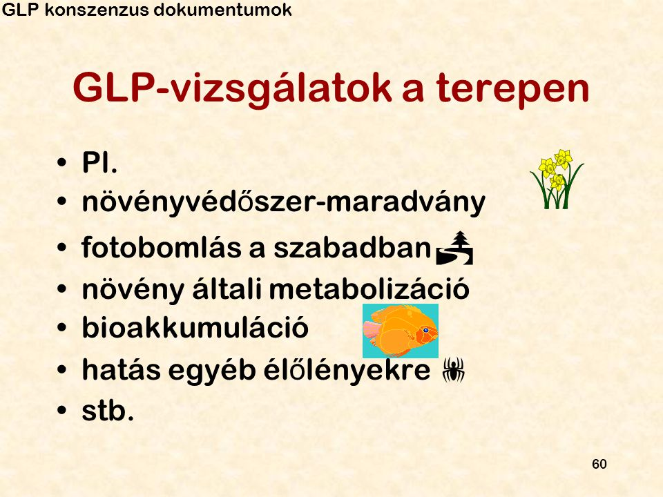 60 GLP-vizsgálatok a terepen Pl. növényvéd ő szer-maradvány fotobomlás a szabadban  növény általi metabolizáció bioakkumuláció hatás egyéb él ő lénye