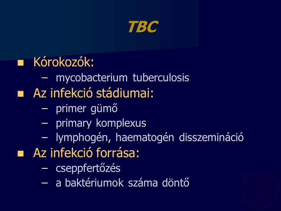 TBC Kórokozók: Kórokozók: –mycobacterium tuberculosis Az infekció stádiumai: Az infekció stádiumai: –primer gümő –primary komplexus –lymphogén, haematogén disszemináció Az infekció forrása: Az infekció forrása: –cseppfertőzés –a baktériumok száma döntő