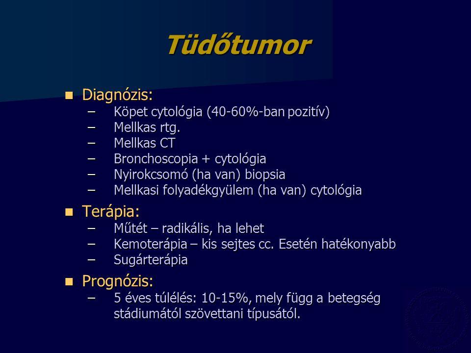 Tüdőtumor Diagnózis: Diagnózis: –Köpet cytológia (40-60%-ban pozitív) –Mellkas rtg.