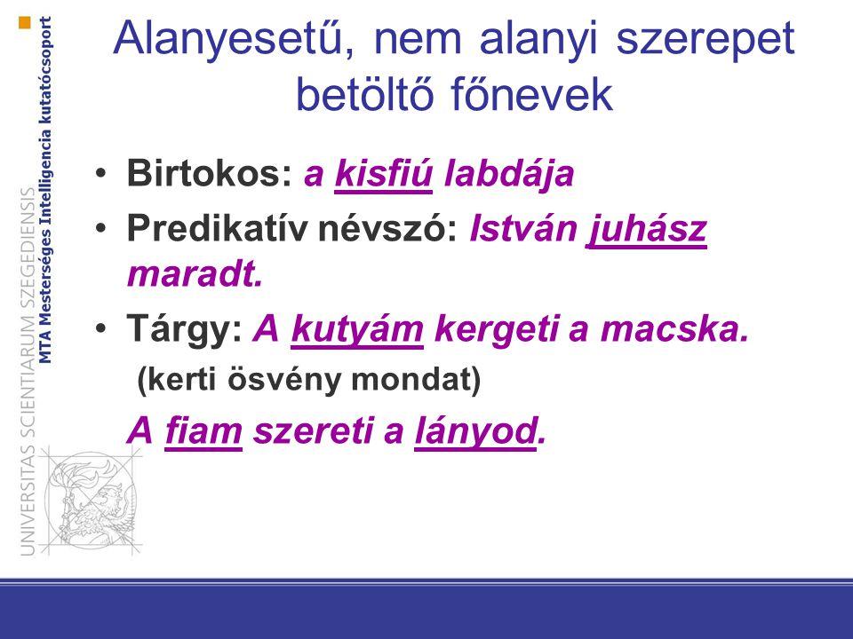 Alanyesetű, nem alanyi szerepet betöltő főnevek Birtokos: a kisfiú labdája Predikatív névszó: István juhász maradt.