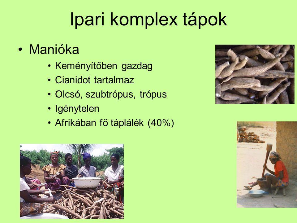 Ipari komplex tápok Manióka Keményítőben gazdag Cianidot tartalmaz Olcsó, szubtrópus, trópus Igénytelen Afrikában fő táplálék (40%)