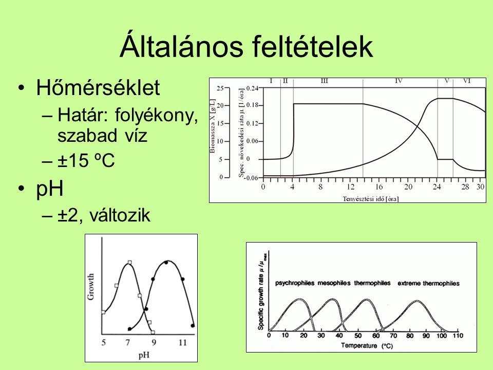 Anaerob fermentáció Gázok –H 2, CH 4 Folyadékok –EtOH, tejsav, oldószerek