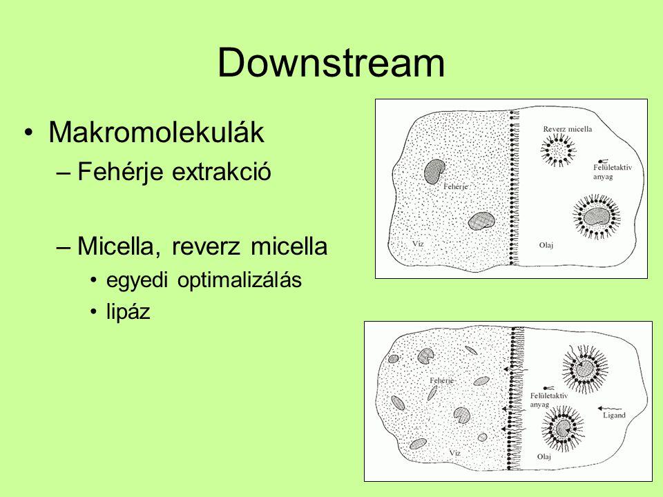 Downstream Makromolekulák –Fehérje extrakció –Micella, reverz micella egyedi optimalizálás lipáz
