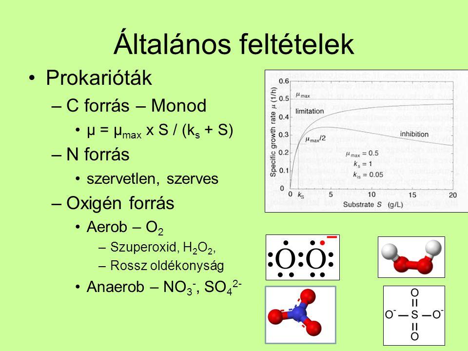Általános feltételek Prokarióták –C forrás – Monod µ = µ max x S / (k s + S) –N forrás szervetlen, szerves –Oxigén forrás Aerob – O 2 –Szuperoxid, H 2 O 2, –Rossz oldékonyság Anaerob – NO 3 -, SO 4 2-