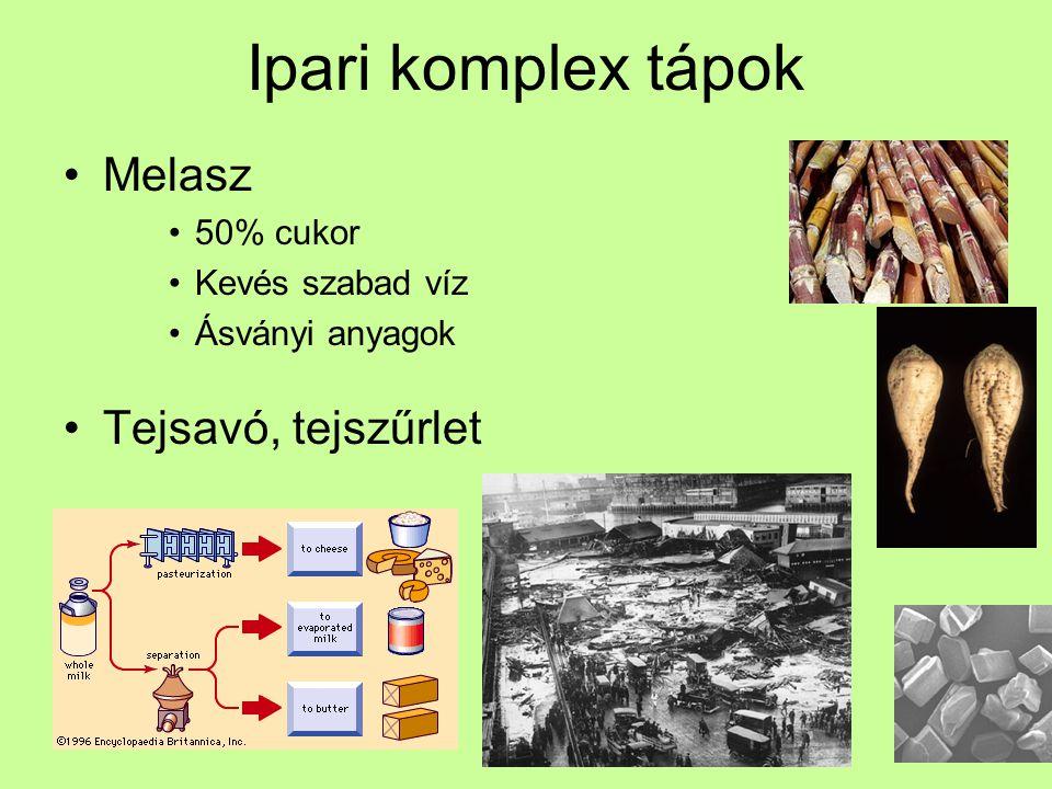 Ipari komplex tápok Tejsavó, tejszűrlet Laktóz Lipidek, Vitaminok Ömlesztett sajt Brunost sajt –Tej, tejföl, savó főzve –Karamellizált cukor