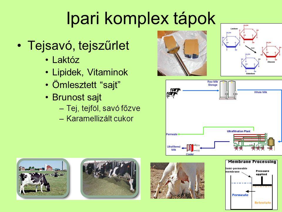 Ipari komplex tápok Kukorica szirup Keményítő kinyerés α-amiláz, glükoamiláz, xilóz amiláz Glutén, olaj N és C forrás Ásványi anyagok