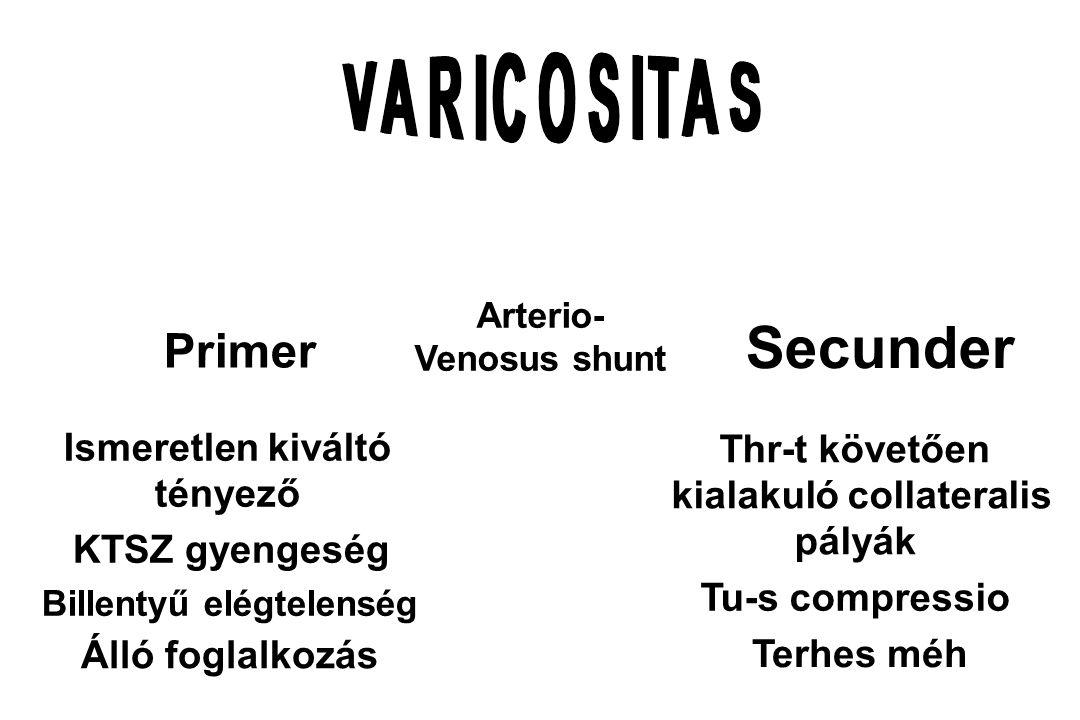 Varicositas - Tünetek A bőr alatti v.