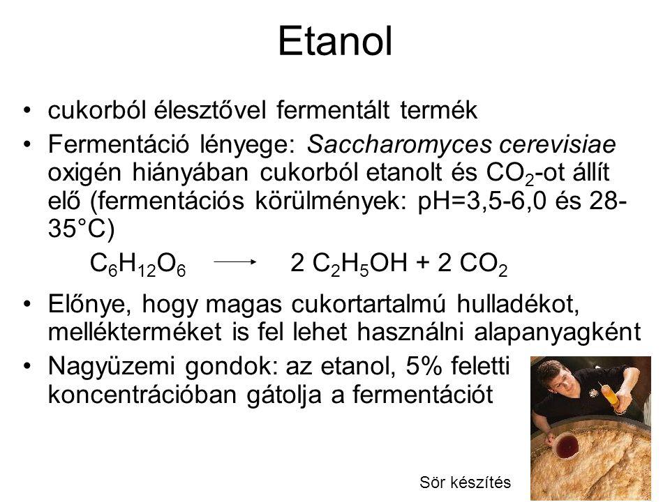 Etanol cukorból élesztővel fermentált termék Fermentáció lényege: Saccharomyces cerevisiae oxigén hiányában cukorból etanolt és CO 2 -ot állít elő (fe