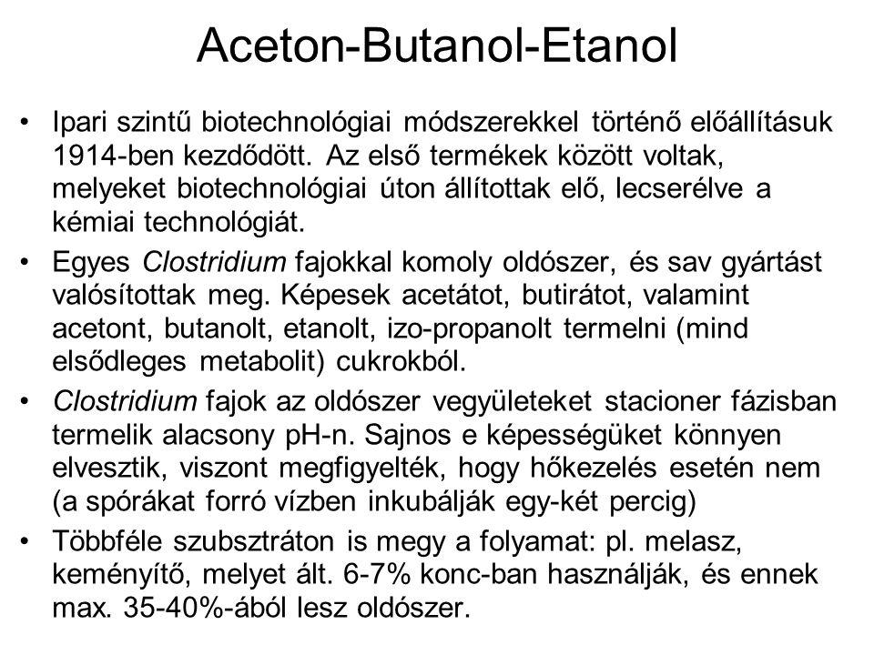 Aceton-Butanol-Etanol Ipari szintű biotechnológiai módszerekkel történő előállításuk 1914-ben kezdődött. Az első termékek között voltak, melyeket biot