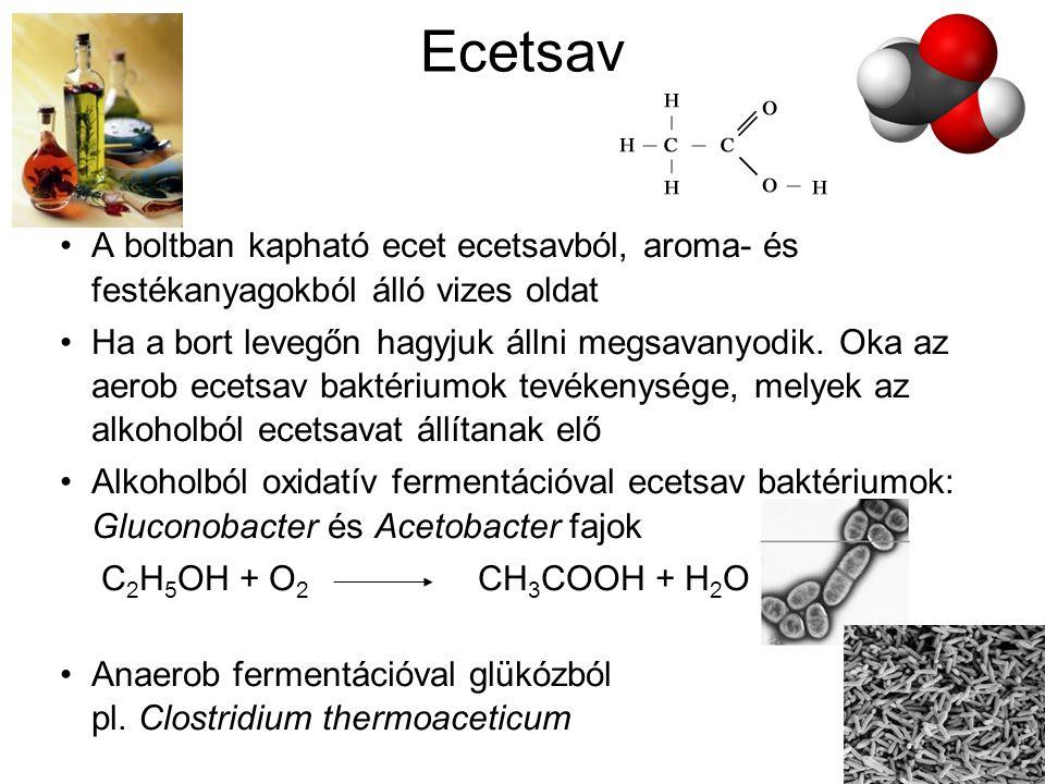 Ecetsav A boltban kapható ecet ecetsavból, aroma- és festékanyagokból álló vizes oldat Ha a bort levegőn hagyjuk állni megsavanyodik. Oka az aerob ece