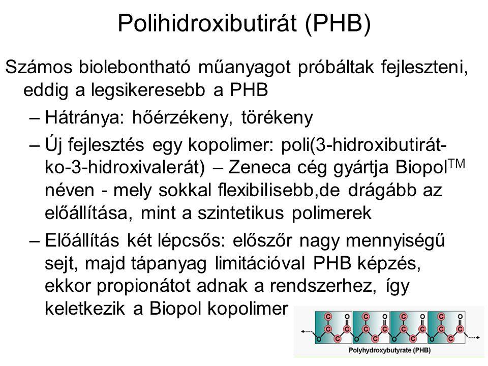 Polihidroxibutirát (PHB) Számos biolebontható műanyagot próbáltak fejleszteni, eddig a legsikeresebb a PHB –Hátránya: hőérzékeny, törékeny –Új fejlesz