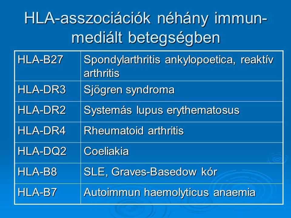HLA-asszociációk néhány immun- mediált betegségben HLA-B27 Spondylarthritis ankylopoetica, reaktív arthritis HLA-DR3 Sjögren syndroma HLA-DR2 Systemás