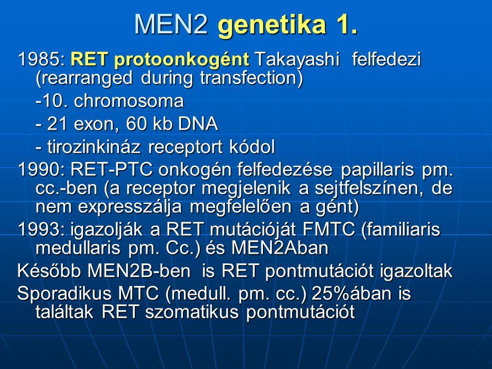 MEN2 genetika 1.1985: RET protoonkogént Takayashi felfedezi (rearranged during transfection) -10.