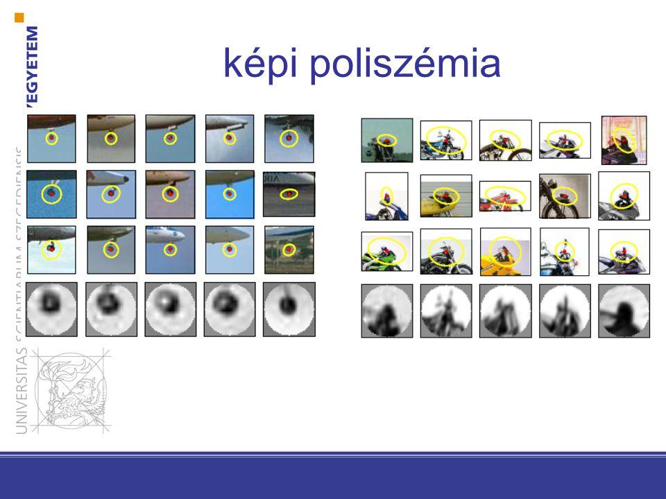 képi poliszémia
