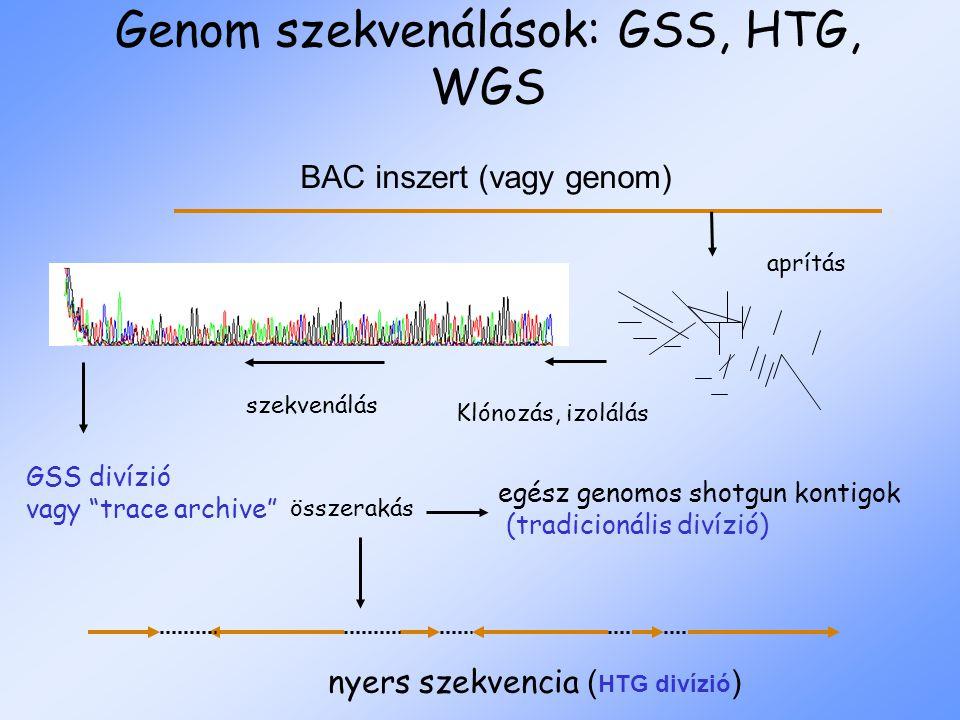 Genom szekvenálások: GSS, HTG, WGS nyers szekvencia ( HTG divízió ) aprítás BAC inszert (vagy genom) Klónozás, izolálás összerakás szekvenálás GSS divízió vagy trace archive egész genomos shotgun kontigok (tradicionális divízió)