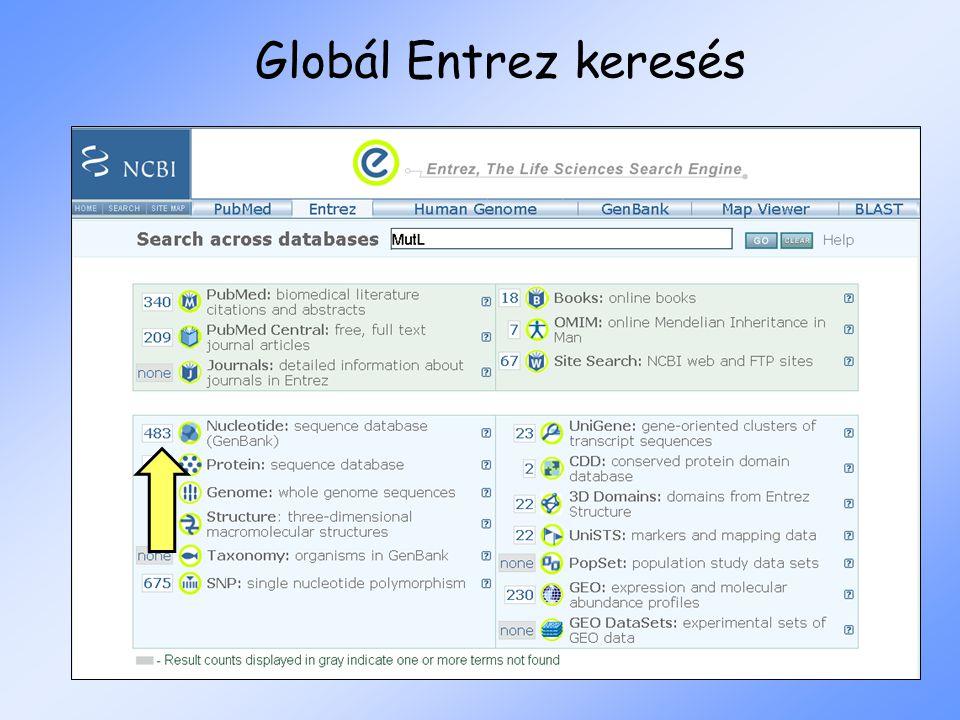 Globál Entrez keresés