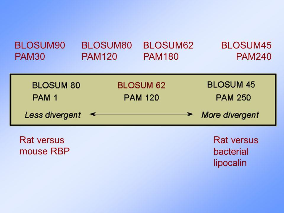 Rat versus mouse RBP Rat versus bacterial lipocalin BLOSUM90 PAM30 BLOSUM45 PAM240 BLOSUM80 PAM120 BLOSUM62 PAM180