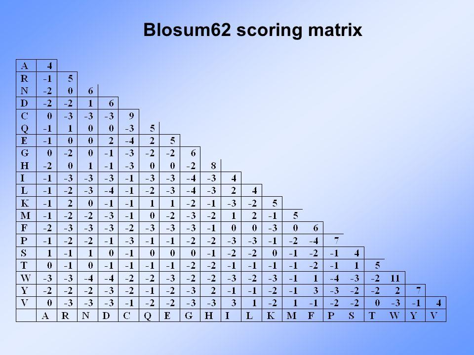 Blosum62 scoring matrix
