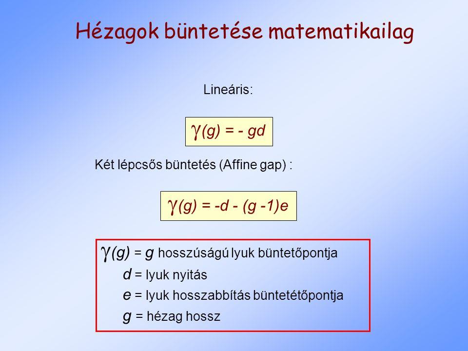 Hézagok büntetése matematikailag Lineáris:  (g) = - gd Két lépcsős büntetés (Affine gap) :  (g) = -d - (g -1)e  (g) = g hosszúságú lyuk büntetőpontja d = lyuk nyitás e = lyuk hosszabbítás büntetétőpontja g = hézag hossz