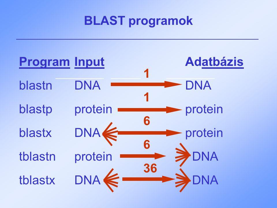 BLAST programok ProgramInputAdatbázis 1 blastnDNADNA 1 blastpproteinprotein 6 blastxDNAprotein 6 tblastnprotein DNA 36 tblastxDNA DNA