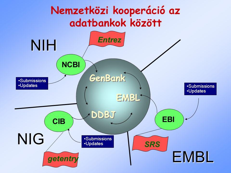 Integrált szekvencia és bibliografikai adatbázisok Entrez Nukleinsav, fehérje szekvenciákat kapcsol össze irodalmi adatokkal (MEDLINE) és más gyűjteményekkel Gyors, hatékony és felhasználóbarát Amerikai SRS (sequence retrieval system) Univerzális kereső motor szekvencia és más adatbázisokhoz Európai, de világméretű Keresés Boolean operátorokkal: AND, OR, NOT Elválasztott karaktersorokkal