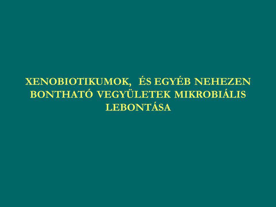 XENOS = IDEGEN SZINTETIKUS = NEM TERMÉSZETES EREDETŰ E vegyületek olyan szerkezeti elemeket tart., melyek természetes módon nem jönnek létre, így a mikroorg-k (egyéb szervezetek) evolúciójuk során nem alakítottak ki megfelelő enzimrendszert bontásukra/átalakításukra Tágabb értelemben azok a szintetikus vegyületek xenobiotikumok, melyek bizonyos funkciós csoportok számában és orientációjában eltérnek a természetesen előforduló anyagoktól Példák: peszticidek, herbicidek, oldószerek, egyéb szerves vegyületek Főleg azért jelentenek veszélyt, mert nem ismerjük kellőképpen hatásukat a környezetre, és mivel a természet számára idegen, így a biodegradációja, biotranszformációja sem indulhat meg rövid időn belül Az 1960-as évek elején felfedezték, hogy számos talajlakó mikroorganizmus képes a xenobiotikumok bontására (adaptáció) Egyféle szennyezés ritkán fordul elő, ált.