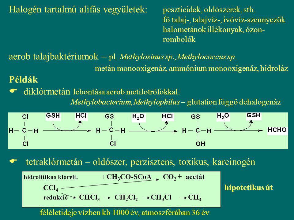  TCE (triklóretilén) - nem ismert olyan baktérium, mely egyedüli szén-, és energia- forrásként hasznosítja - biodegradáció kometabolizmussal, oxigenáz reakció, szubsztrát lehet: alkán, alkén, aromás - aerob bontás: Metanotrófok, Pseudomonasok A keletk.