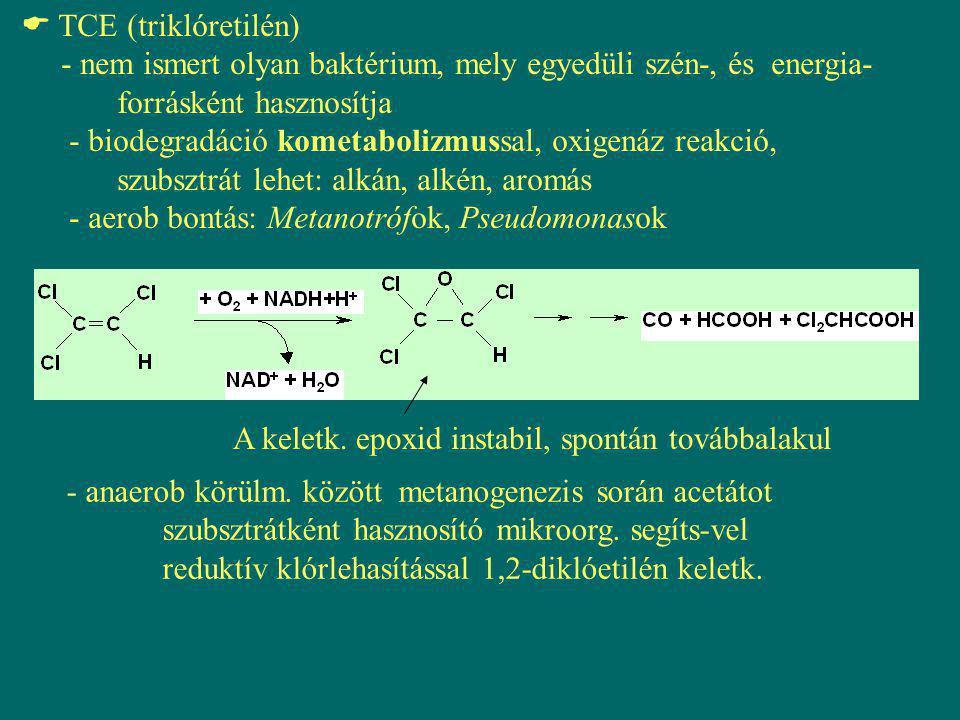 TCE bontása metanotróf baktériumban: Növekedési szubsztrát CH 4 CH 3 OH Köztes metabolizmus szaporodás NADH NAD + O2O2 H2OH2O Metán- monooxigenáz