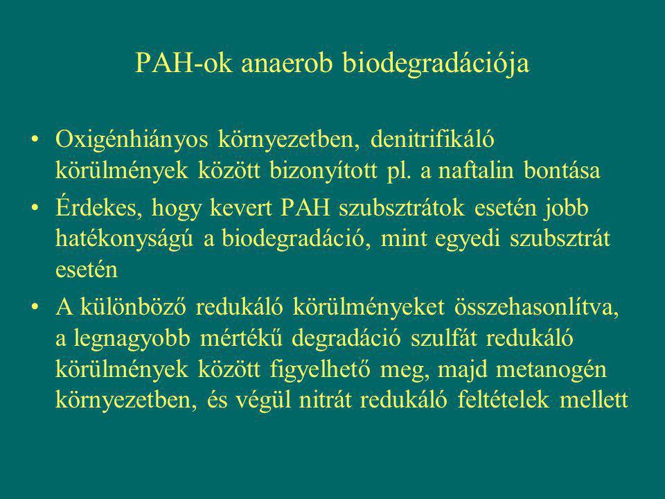 PAH-ok anaerob biodegradációja Oxigénhiányos környezetben, denitrifikáló körülmények között bizonyított pl. a naftalin bontása Érdekes, hogy kevert PA
