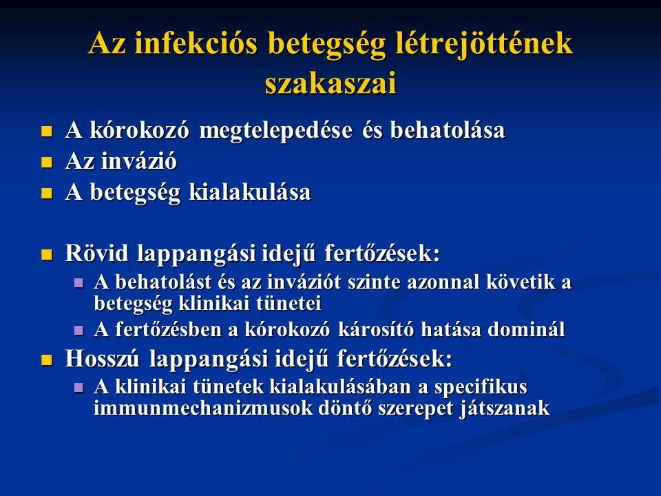 Az infekciós betegség létrejöttének szakaszai A kórokozó megtelepedése és behatolása A kórokozó megtelepedése és behatolása Az invázió Az invázió A betegség kialakulása A betegség kialakulása Rövid lappangási idejű fertőzések: Rövid lappangási idejű fertőzések: A behatolást és az inváziót szinte azonnal követik a betegség klinikai tünetei A behatolást és az inváziót szinte azonnal követik a betegség klinikai tünetei A fertőzésben a kórokozó károsító hatása dominál A fertőzésben a kórokozó károsító hatása dominál Hosszú lappangási idejű fertőzések: Hosszú lappangási idejű fertőzések: A klinikai tünetek kialakulásában a specifikus immunmechanizmusok döntő szerepet játszanak A klinikai tünetek kialakulásában a specifikus immunmechanizmusok döntő szerepet játszanak