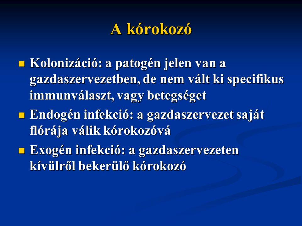 A kórokozó Kolonizáció: a patogén jelen van a gazdaszervezetben, de nem vált ki specifikus immunválaszt, vagy betegséget Kolonizáció: a patogén jelen van a gazdaszervezetben, de nem vált ki specifikus immunválaszt, vagy betegséget Endogén infekció: a gazdaszervezet saját flórája válik kórokozóvá Endogén infekció: a gazdaszervezet saját flórája válik kórokozóvá Exogén infekció: a gazdaszervezeten kívülről bekerülő kórokozó Exogén infekció: a gazdaszervezeten kívülről bekerülő kórokozó
