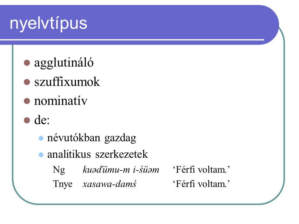 nyelvtípus agglutináló szuffixumok nominatív de: névutókban gazdag analitikus szerkezetek Ng kuəďümu-m i-śüəm 'Férfi voltam.' Tnye xasawa-damś 'Férfi