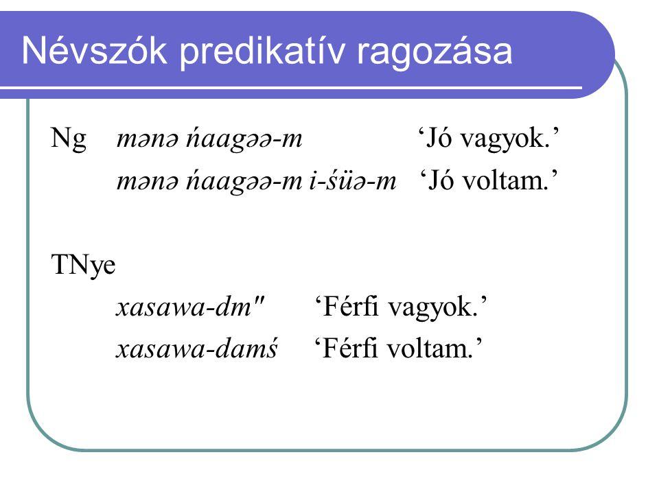Névszók predikatív ragozása Ng mənə ńaagəə-m 'Jó vagyok.' mənə ńaagəə-m i-śüə-m 'Jó voltam.' TNye xasawa-dm