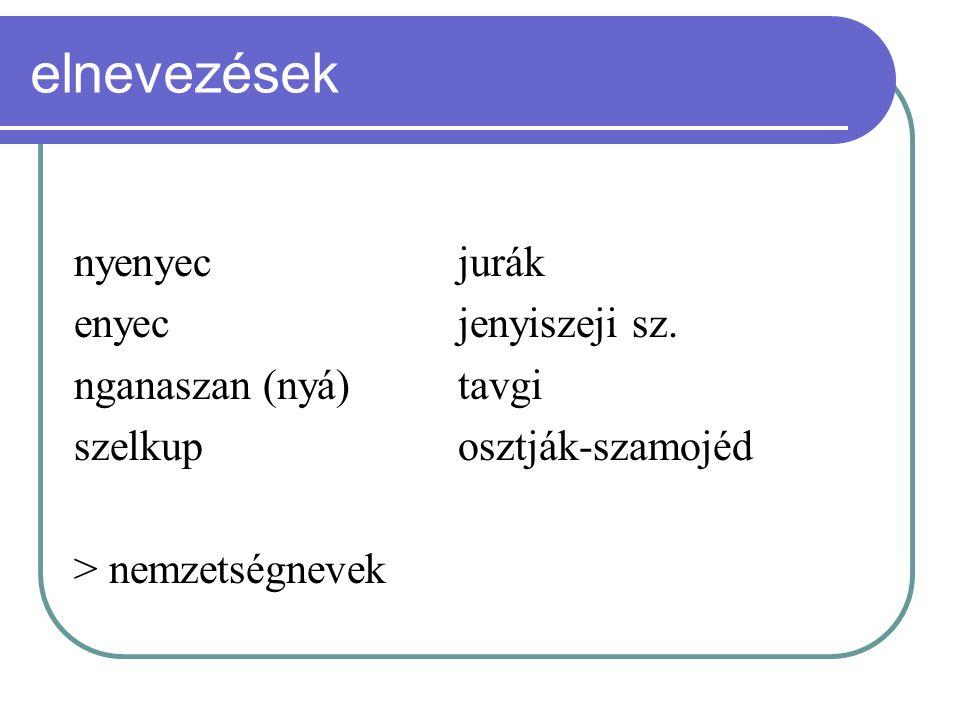 elnevezések nyenyecjurák enyecjenyiszeji sz. nganaszan (nyá) tavgi szelkuposztják-szamojéd > nemzetségnevek
