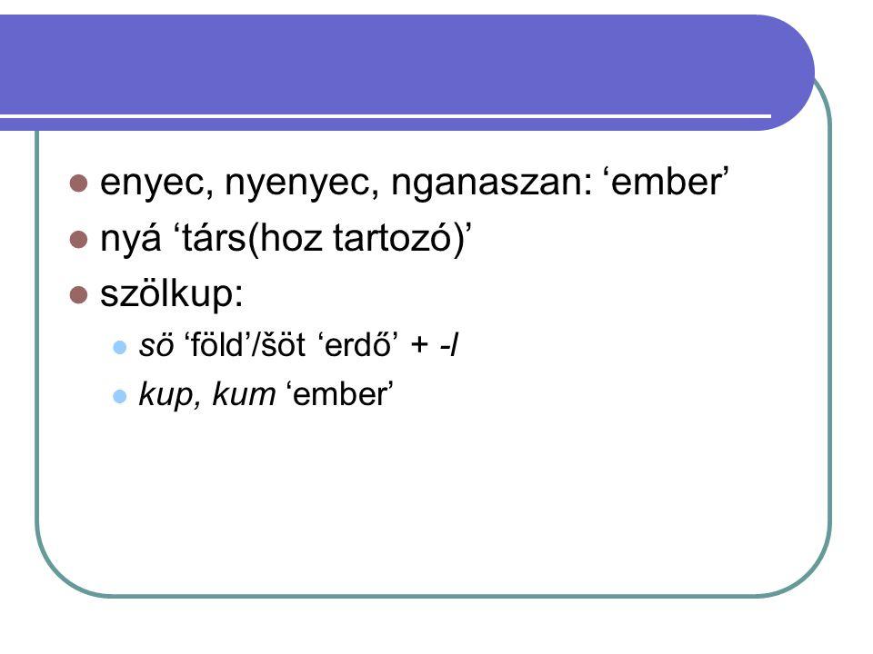enyec, nyenyec, nganaszan: 'ember' nyá 'társ(hoz tartozó)' szölkup: sö 'föld'/šöt 'erdő' + -l kup, kum 'ember'