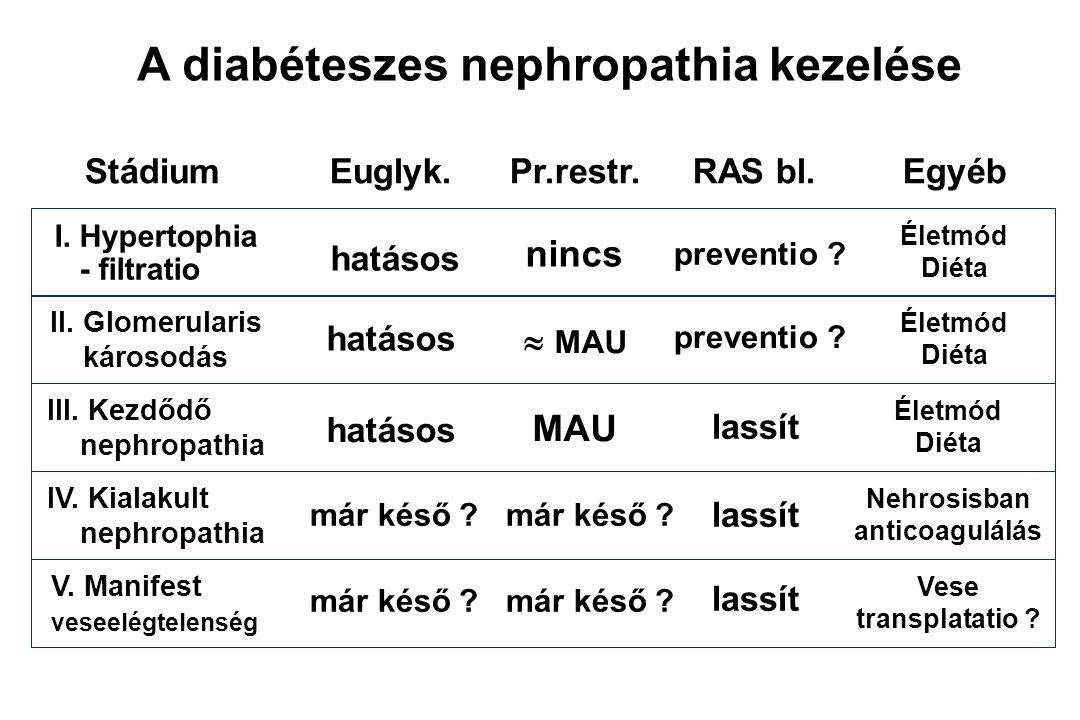 Diabeteses nephropathia - terápiás szempontok Életkor Diabetes típusa, súlyossága Szövődmények jellege Társbetegségek Nephropathia stádiuma - mikroalbuminuria hypertensio proteinuria