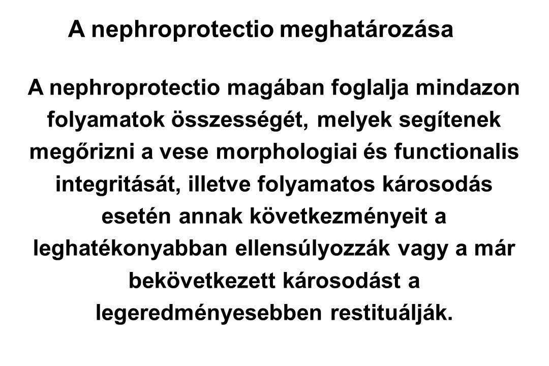 Euglyk.Stádium A diabéteszes nephropathia kezelése Pr.restr.RAS bl.Egyéb hatásos I.