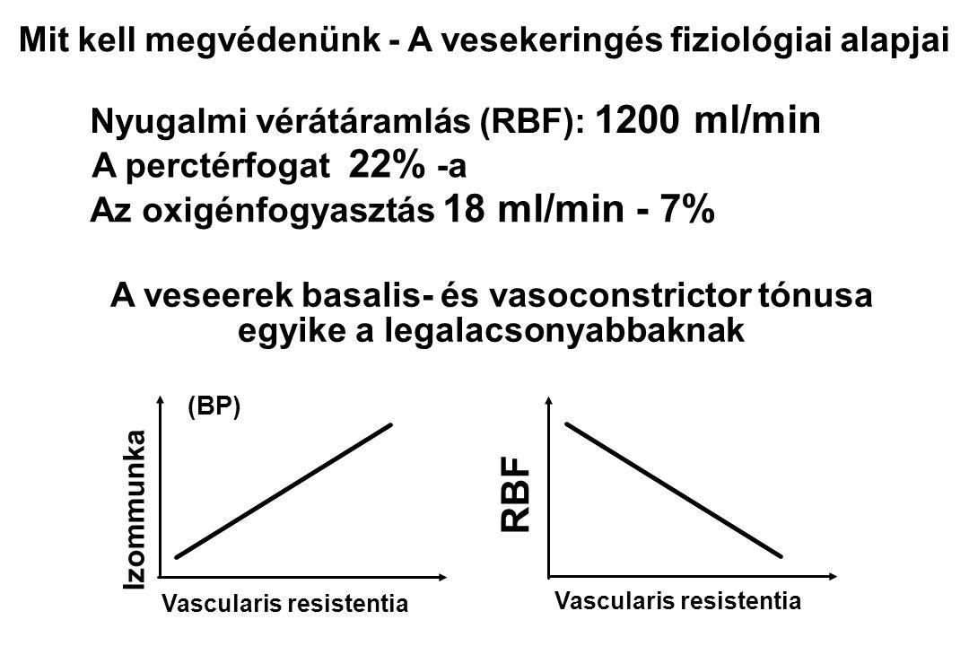 Nephropathia Cadiovascularis Cerebrovascularis DM coma 1-es DM %2-es DM % Halálok 55 A korai halálozás okai diabetes mellitusban 3 15 58 3 12 4 1 Handbook of Diabetes; ed.2, 1999, 42