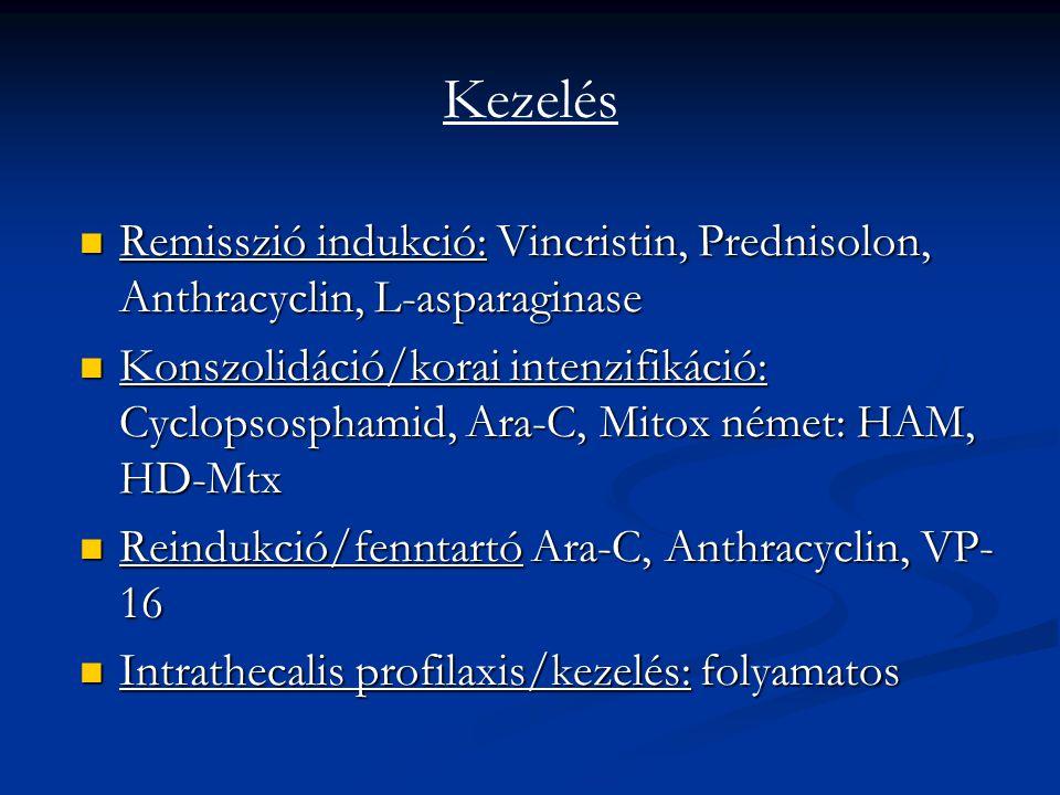 Kezelés Remisszió indukció: Vincristin, Prednisolon, Anthracyclin, L-asparaginase Remisszió indukció: Vincristin, Prednisolon, Anthracyclin, L-asparag