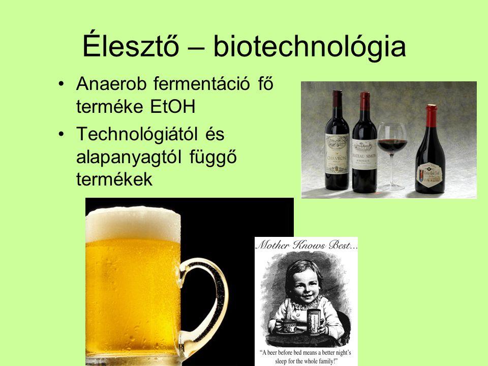 Élesztő – biotechnológia Anaerob fermentáció fő terméke EtOH Technológiától és alapanyagtól függő termékek