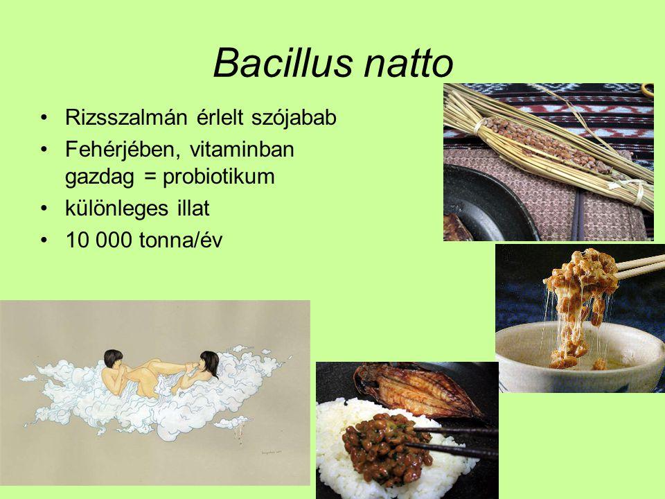 Bacillus natto Rizsszalmán érlelt szójabab Fehérjében, vitaminban gazdag = probiotikum különleges illat 10 000 tonna/év