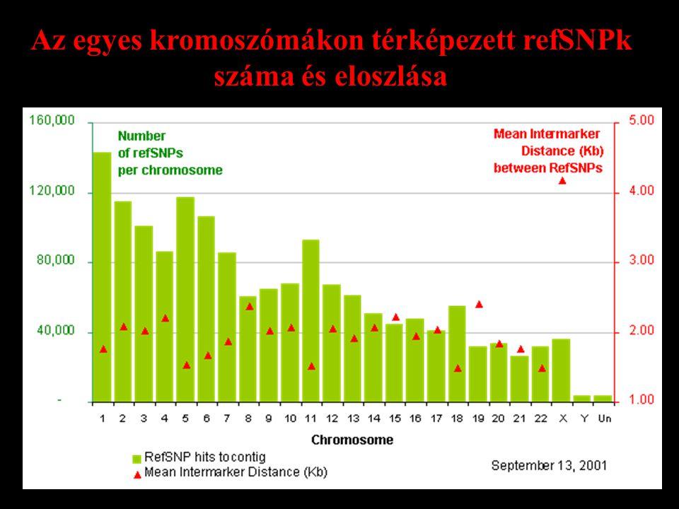Az egyes kromoszómákon térképezett refSNPk száma és eloszlása