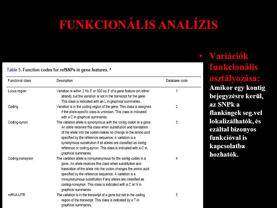 FUNKCIONÁLIS ANALÍZIS Variációk funkcionális osztályozása: Amikor egy kontig bejegyzésre kerül, az SNPk a flankingek seg.vel lokalizálhatók, és ezáltal bizonyos funkcióval is kapcsolatba hozhatók.