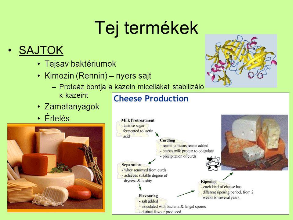 Tej termékek SAJTOK Tejsav baktériumok Kimozin (Rennin) – nyers sajt –Proteáz bontja a kazein micellákat stabilizáló κ-kazeint Zamatanyagok Érlelés